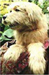 Doogy Dog               from Cbeebies Smarteenies Puppeteered by Marcus Clarke